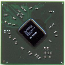AMD 216-0809000